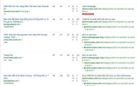 Bảng phân tích từ khóa idichvuseo.com
